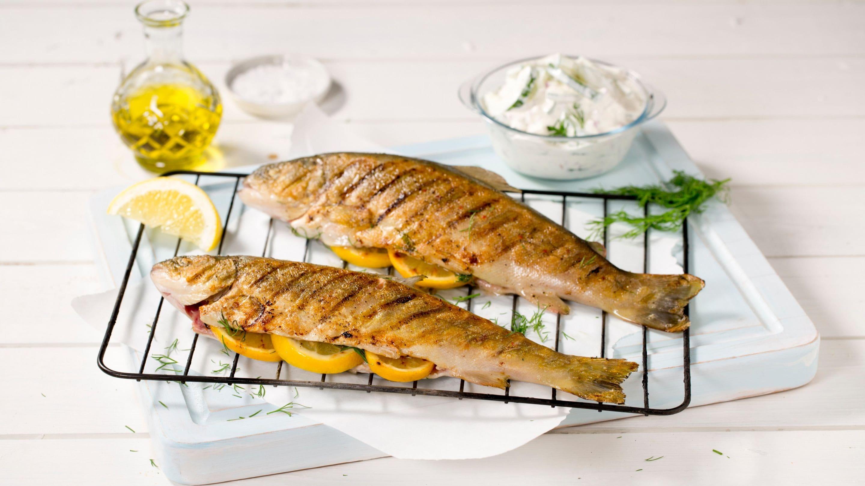 agurksalat til fisk
