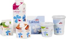Laktosefri matfløte lettmelk kremfløte vaniljeyoghurt blåbæryoghurt lettrømme og natuerell yoghurt